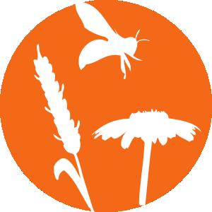 LogoBleMiel